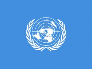 Les acteurs participant à la médiation politique à l'ONU